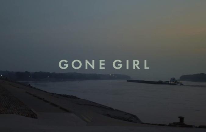 GoneGirl 1
